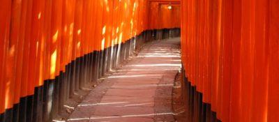 Torii shrine gates, by Smaku, via flickr