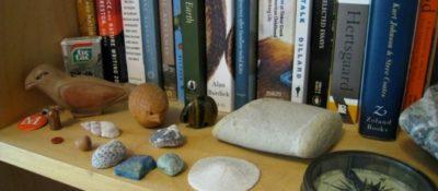 Meera's Shelf