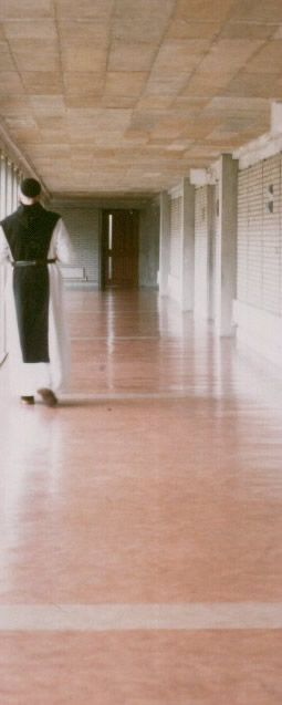 """""""I mopped thin stripes along the floor, careful to let one dry before beginning another."""""""